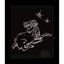 Знак зодиака Овен малый