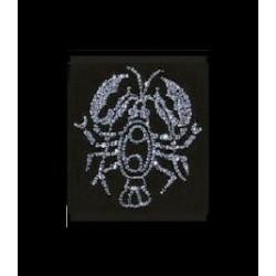 Знак зодиака Рак малый